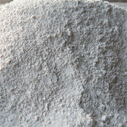 ostrea sea shell flour